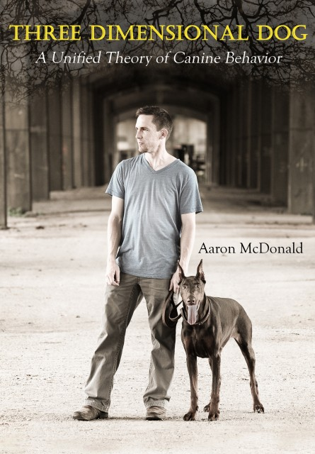 Aaron McDonald, Three Dimensional Dog